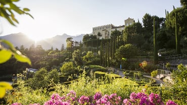 Famous Gardens of South-Tyrol & Veneto