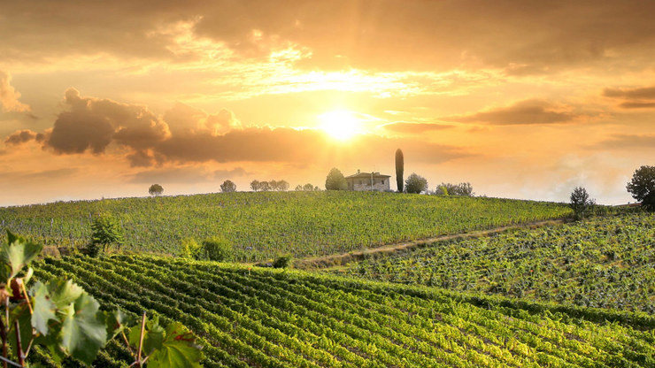 Prosecco Route from Trieste to Venice