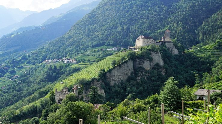 Wine Routes of Northern Italy