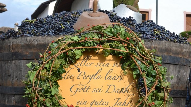Wine Harvest Celebration on the South Tyrol Wine Route